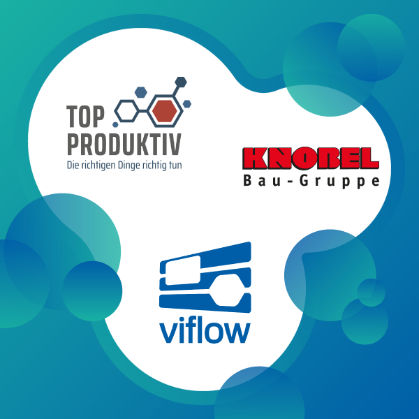 viflow at the Knobel Bau-Gruppe